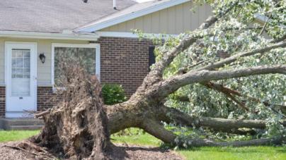Tormenta de viento deja muertos y miles de hogares sin luz