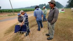 Recorte a presupuesto Departamento Trabajo afectaría a latinos, según reporte