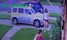 Arrestan a mujer por robar macetas