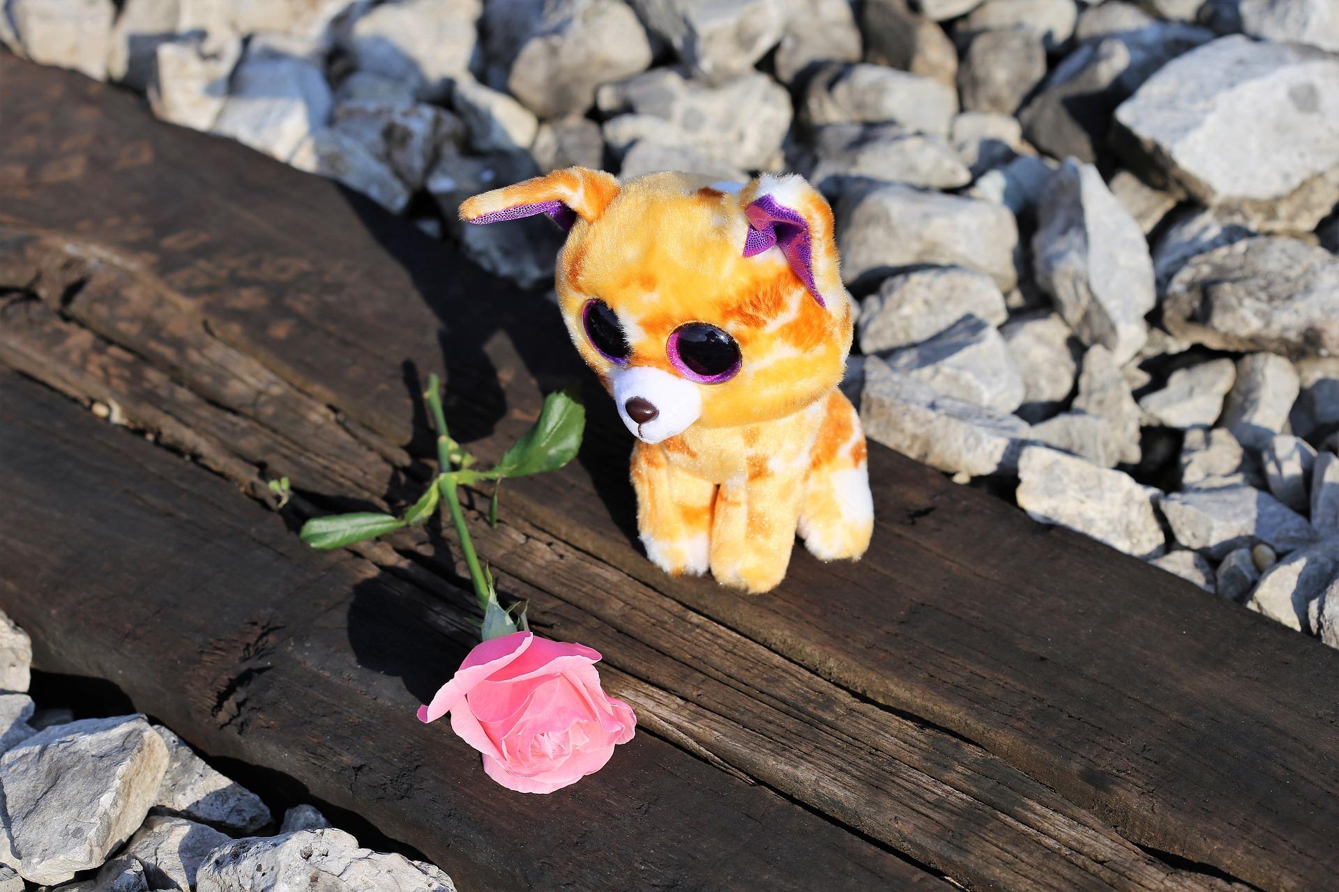 """Un chileno abusa sexualmente y mata a su hijastra de 3 años por """"CELOS"""""""