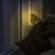 Sospechoso de varios asaltos a hogares es arrestado en Ottawa.