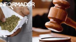 Suprema Corte de México establece jurisprudencia para uso lúdico de marihuana