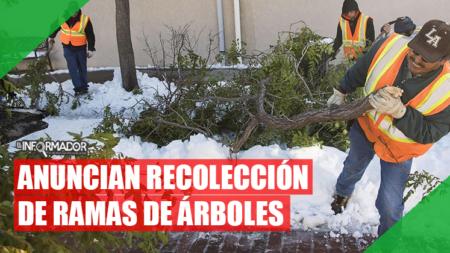 Recolección especial de residuos de jardín por tormenta invernal