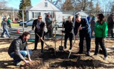 Planta un árbol en GR