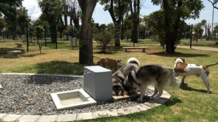 Se aprueba un nuevo parque para perros en el centro de Grand Rapids