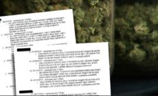 Demandan a compañía por enviar mensajes de venta de marihuana