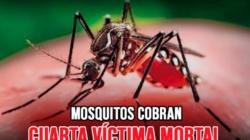 Mosquitos cobran su cuarta víctima mortal en Michigan