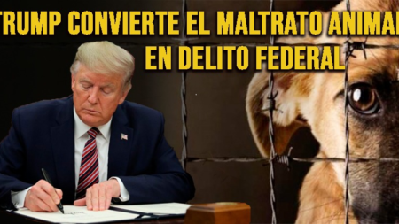 Donald Trump convierte la tortura animal en delito federal