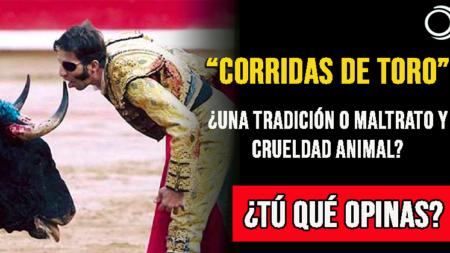 Corridas de toro ¿una tradición o maltrato y crueldad animal?