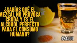 ¿sabías qué el mezcal no provoca cruda y es el alcohol perfecto para el consumo humano?