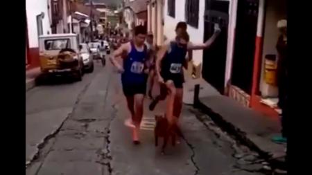 VÍDEO: Atleta patea a perro en plena carrera y pierde apoyo de patrocinador