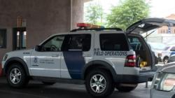 Greyhound negará acceso de agentes migratorios a autobuses sin orden judicial
