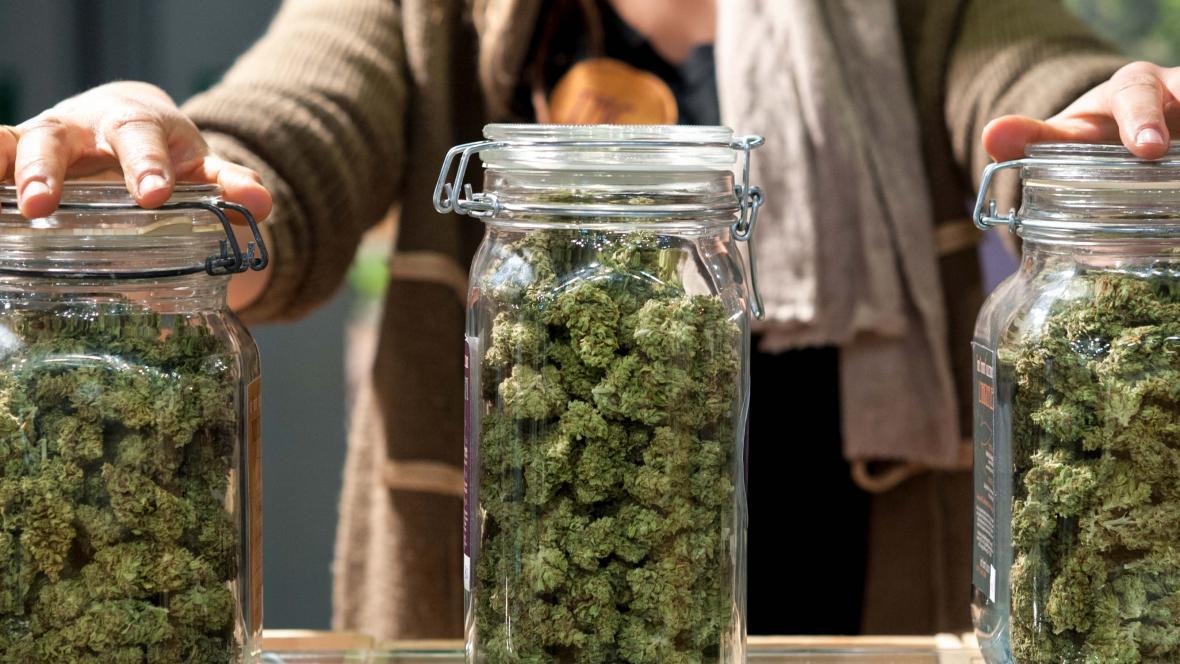 """""""Ya se dijo"""" por lo pronto no habrá tiendas de marihuana recreativa en GR"""