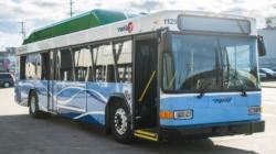 The Rapid reduce servicio de autobuses