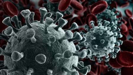 Director de Instituto de Enfermedades Infecciosas en USA predice millones de casos de Coronavirus