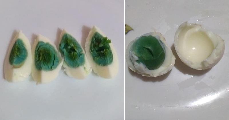 Gallina pone huevos con la yema verde y nadie sabe por qué