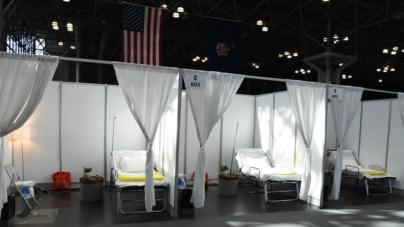 Estudio revela que respuesta tardía a pandemia costó 36 mil muertes a USA